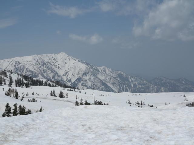 5月の立山.jpg