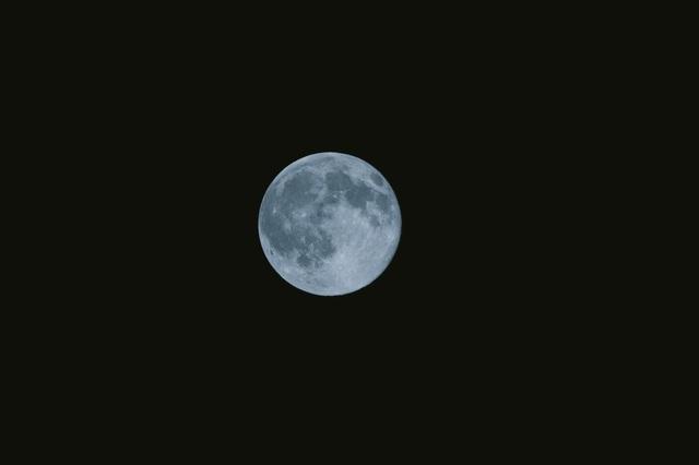さしこむのは月あかり.jpg