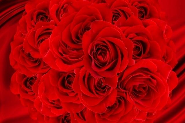 バラと幕.jpg