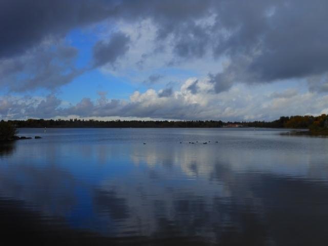 フィンランドの湖.jpg