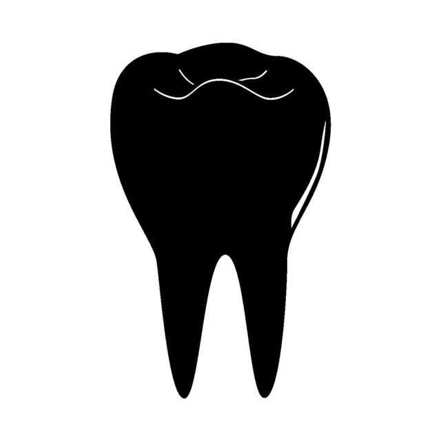 歯.jpg