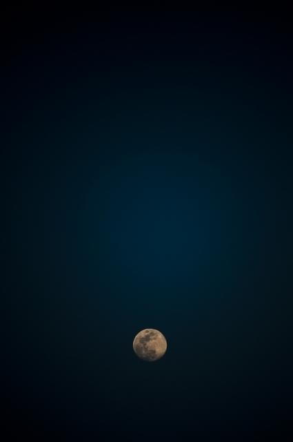 満月までもう少し.jpg